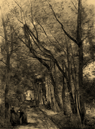 People walking down a path, a large tree overshadows them